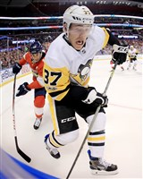 Penguins Carter Rowney fights for the puck during a game against the Florida Panthers at BB&T Center on Friday, October 20, 2017 in Sunrise, Florida.