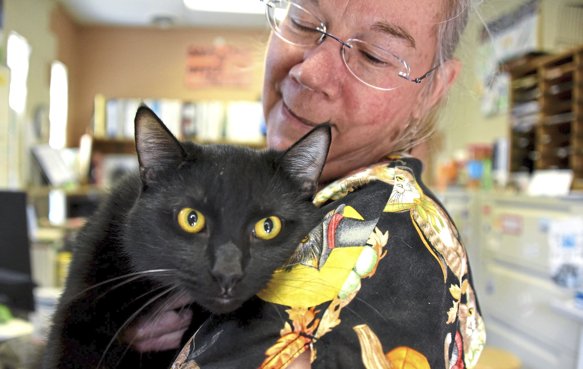 20171016dsPetTales1021Mag02-1 Betsy Kennon, a recently retired veterinarian who now volunteers at the shelter, holds a cat named Spaz at Animal Protectors Of Allegheny Valley.