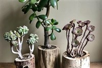 Driftwood planters from Rustbelt Workshop, one of 90 artisans at the I Made It! for the Holidays market on Nov. 25-26.