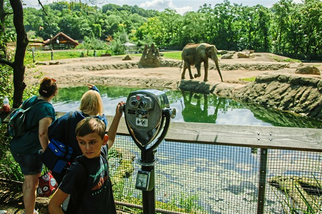 Visitors watch elephants at the Pittsburgh Zoo & PPG Aquarium in Highland Park.