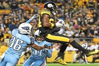 The Steelers' Antonio Brown makes a touchdown catch against the Titans on Thursday at Heinz Field.