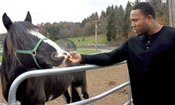 Spirit, a Shire draught horse from Port Jervis, N.Y., and Steelers defensive end Stephon Tuitt get acquainted at a stable in South Park on Friday. Mr. Tuitt donated Spirit to be the newest member of the Pittsburgh Bureau of Police Mounted Patrol.