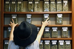 In this Aug. 11, 2016, file photo, assistant manager Jaclyn Stafford arranges glass display containers of marijuana on shelves at The Station, a retail and medical cannabis dispensary, in Boulder, Colo.