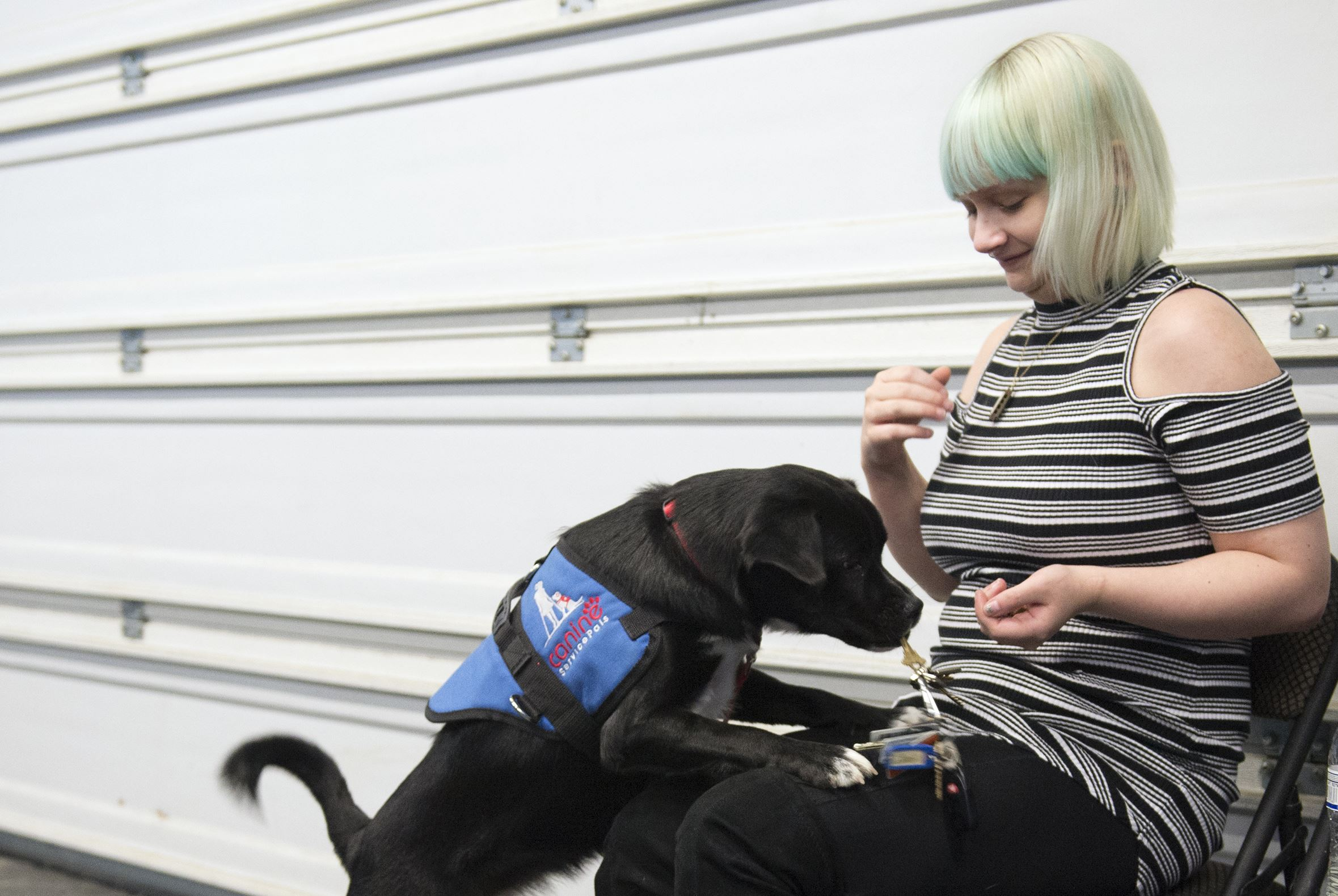 20171220hnRaisin-5-1 Sydney Campbell, 19, praises her new service dog, Raisin, for fetching a lanyard of keys at Parkway Pet Lodge in Moon. Raisin is the first graduate from Canine Service Pals, a nonprofit that rescues and trains shelter dogs to help children and adults with disabilities.