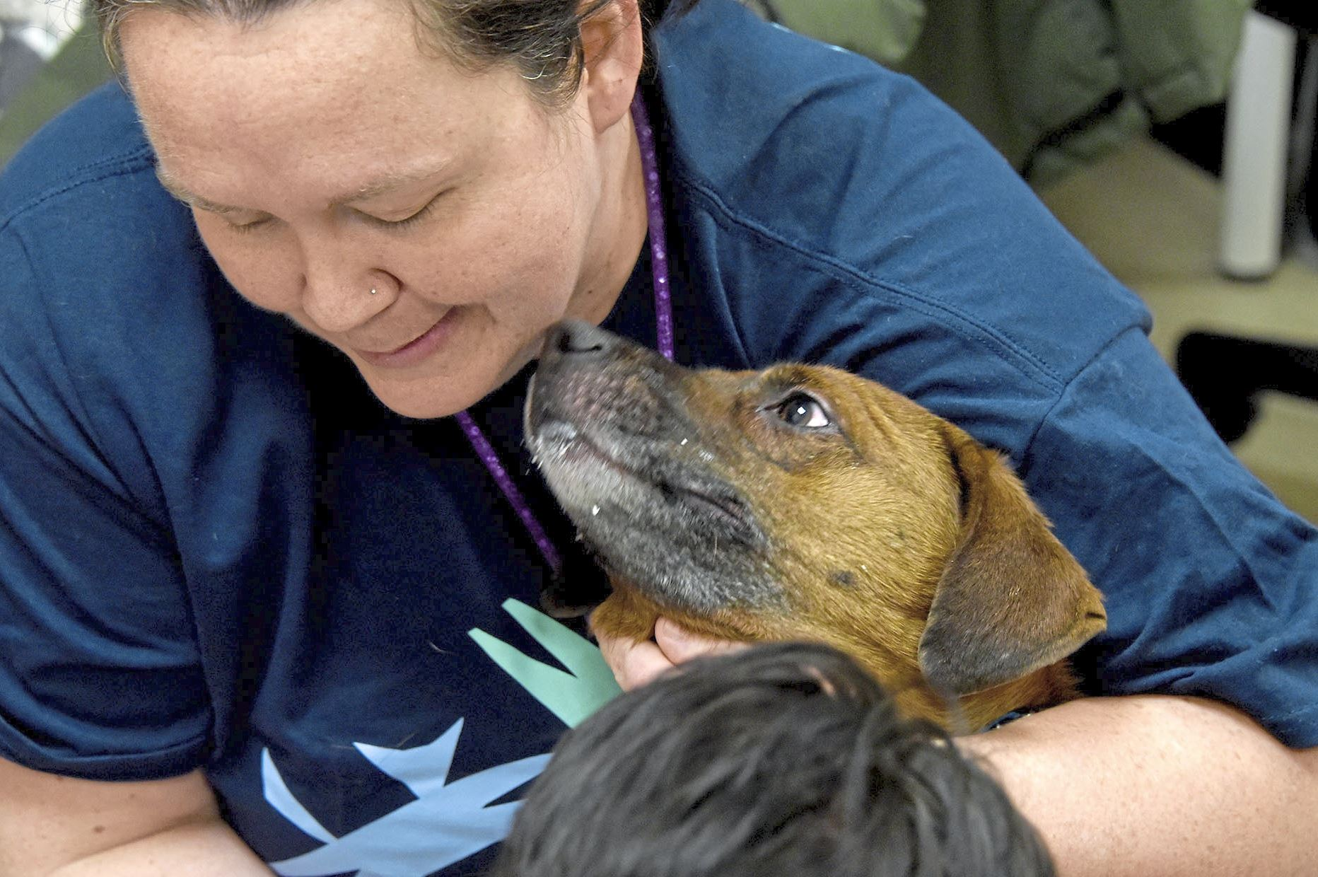 "20171229dsNewYearRescueLocal11-6 Veterinarian Dr. Tegan Fuller gets a lick from ""Creme Brulee"" during her physical in the examine room at the Animal Friends, Friday December 29, 2017 in Ohio Township."