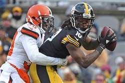 Martavis Bryant makes a catch Dec. 31 against the Browns at Heinz Field.