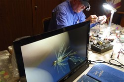 A soft hackle fly is displayed on a video monitor as fly tyer Bruce Cox demonstrates his technique at a Trout Unlimited meeting.