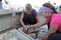 "Uniontown native Kristi Leskinen and partner Jen Hudak stack tiny little fish at the Old Fish Port in Morocco as a challenge on ""The Amazing Race."""