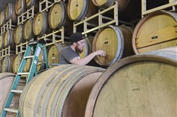 Bert Mooney IV checks the condition of a beer barrel aging at Strange Roots Experimental Ales in West Deer.