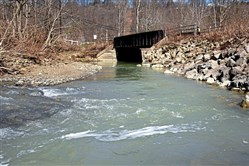 The greenish milky discharge water in the  Montour Run runs toward a bridge on the Montour Trail near the Ewings Mill and Hassam roads crossing in Robinson.