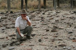 Rick Potts, director of the National Museum of Natural History's Human Origins Program at the Smithsonian, surveys an assortment of Early Stone Age hand axes discovered in Kenya's Olorgesailie Basin.