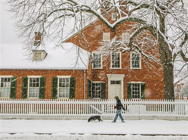 A man walks his dog past Old Economy Village during a spring snowstorm on Wednesday in Ambridge.
