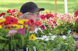Tom Brenckle sits among his flowers during a farmers market at Allegheny Commons Park on Friday, May 25, 2018.The North Side Farmers Market is held every Friday from 3:30 to 7:30 p.m.