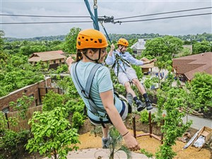 Chelsea Anna, left, Communications Manager, and Adam Martinez, an intern at the zoo, take a ride on the new zipline at Jungle Odyssey at the Pittsburgh Zoo & PPG Aquarium on Tuesday, May 22, 2018 in Highland Park. The zipline starts 25 feet in the air and runs 170 feet over over giant anteaters, capybaras, and pygmy hippos. (Andrew Rush/Post-Gazette)