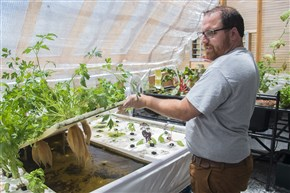 Casey Clauser, farm manager for Oasis Farm and Fishery, shows the plants growing system at the farm in Homewood.