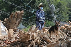 A member of the Maritime Self Defense Forces searches for missing people at a flood-damage site in Kure, Hiroshima prefecture, on July 12, 2018.