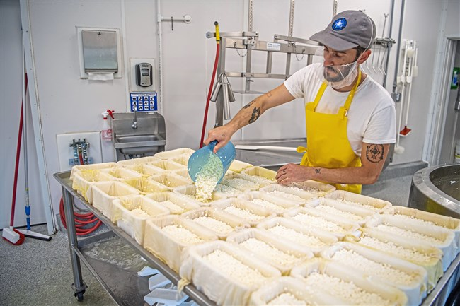 Cheese maker Zac Herring fills molds, lined with cheese cloth, with curds and whey while making Bamboozle cheese at Goat Rodeo Farm & Dairy in Indiana Township.