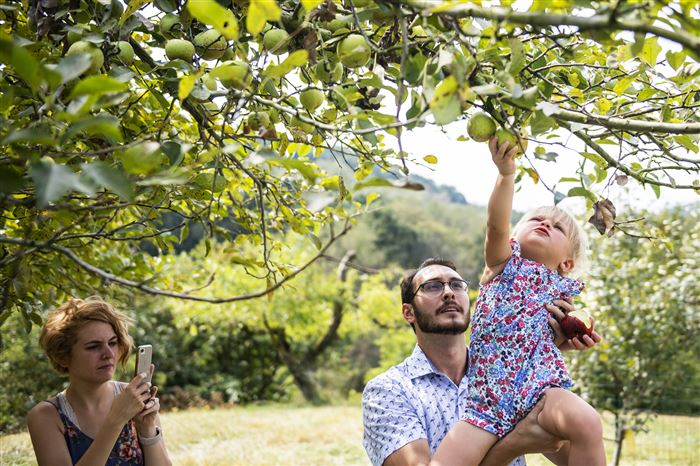 It's fun to be really picky during apple season